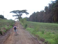 biking on kili.jpg